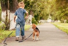 Lassen Sie uns zusammen spielen! Jungenweg mit Welpen Stockfotografie