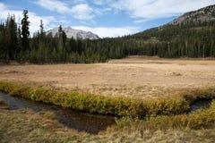 Lassen-vulkanischer Nationalpark stockfoto
