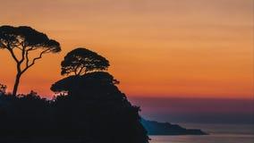 Lasso di tempo, bella regolazione del sole di tramonto dietro gli alberi sulle colline dell'Italia a Sorrento, posto della rafia  stock footage