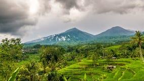 Lasso di tempo del terrazzo del riso e di due montagne video d archivio