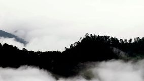 lasso di tempo della nebbia stock footage