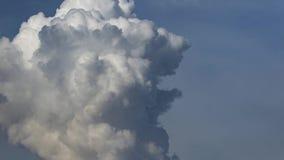 Lasso di tempo dello scape del cielo e della nuvola stock footage