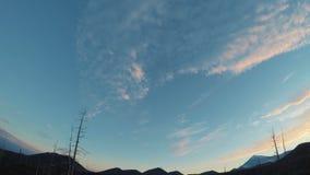 Lasso di tempo Giro 360 Nuvole di galleggiamento, giovani alberi nella foresta Titelaps al tramonto nella foresta video d archivio