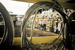 Lasso rope rodeo. Abstract picture of a rodeo event focusing on the lasso rope. through the rope you can see cowboys Royalty Free Stock Photography