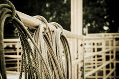 Lasso rope rodeo. Abstract picture of a rodeo event focusing on the lasso rope. through the rope you can see cowboys Stock Photo