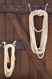 Lasso ropes at stable door Stock Image
