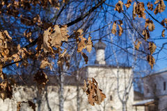 Last autumn leaves and domes Royalty Free Stock Images