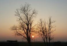 Last Autumn Sunset Royalty Free Stock Photos