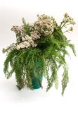 Last autumn yarrow. The Image of a bouquet of a yarrow Stock Image