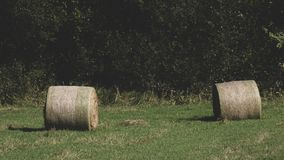 The last bale of straw before autumn royalty free stock photo