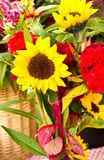 Last bouquet Stock Photography
