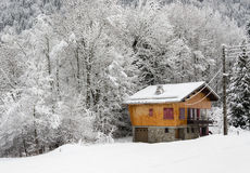 Last cottage next to woods. Last chalet next to the thick woods on the mountain in the snow. Snowy branches. Morzine, France Stock Photo