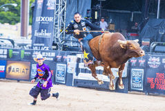 Last Cowboy Standing Stock Photos