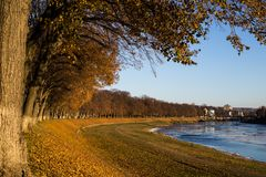 Autumn at linden alley on the quay royalty free stock photo
