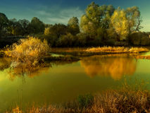 Last days of summer. Evening landscape with trees and lake royalty free stock photo