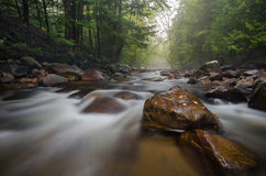Last Days of Summer on an Adirondack Stream Stock Photo