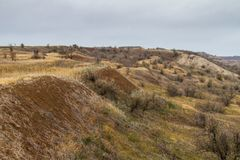 The last days in the Tavrian steppe. The last days of warm autumn before the terrible frosts in the Tavrian steppe. Zaporizhia region, Ukraine. November 2018 stock photo