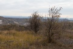 The last days in the Tavrian steppe. The last days of warm autumn before the terrible frosts in the Tavrian steppe. Zaporizhia region, Ukraine. November 2018 stock images