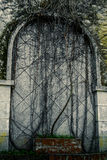 Fake Door. Weathered gate shaped  stone wall with creepers Stock Photography