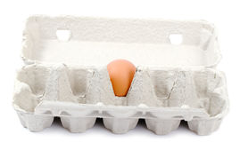Last egg. Stock Photography