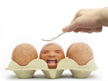 Last egg remaining!. A scared egg being the last one in the carton not cracked stock photo
