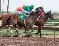 Last Horse Races In Arizona Until Fall Royalty Free Stock Photography