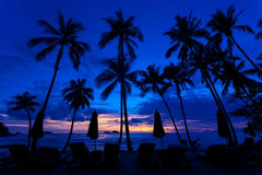 Last light of the day after sunsets. Silhouette scenery view sunset on the island sand beach with coconut tree on the foreground photo caption with natural Stock Photo