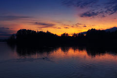 Last light over the lake. The last light of the day over the lake royalty free stock photo