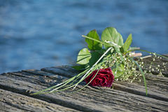 Last love greeting, rose bouquet on the old wooden pier after a Royalty Free Stock Photo
