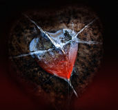Last love impulse. In an iced heart Stock Images