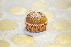 Last muffin Royalty Free Stock Images