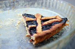 Last piece of Blueberries jam tart Stock Images