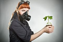 The last plant on Earth Stock Image