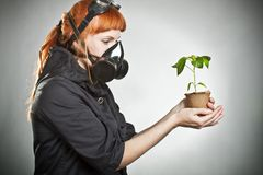 The last plant on Earth Royalty Free Stock Image