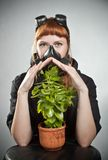 The last plant on Earth Stock Photo