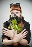 The last plant on Earth Stock Photos