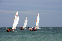 Last race of the season. At Trearddur Bay Sailing Club Isle of Anglesey Royalty Free Stock Photos