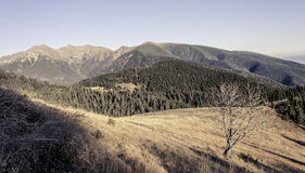 Last rays touch the high mountains in autumn Royalty Free Stock Photo