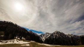 Last snow in the clearing. A mountain meadow in a spring morning Stock Photos