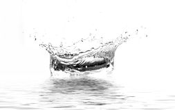 ' last splash ' Obraz Royalty Free