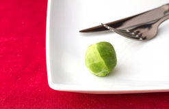 Last sprout on a plate Stock Photo