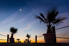 Last star - moon and palms on pier at sunrise Royalty Free Stock Photos