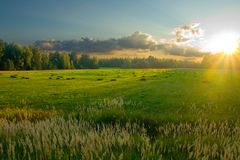 Last sunlight. Sunset in the field. There are stackes on the field Royalty Free Stock Photos