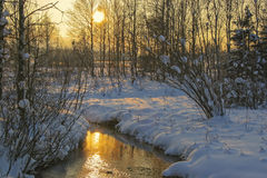 The last sunrays of a winter day Royalty Free Stock Photos