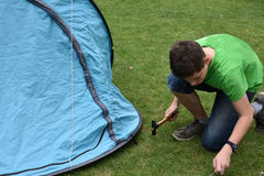 Last tent peg. Teenage boy banging in tent pegs. Fixing the tent on the ground Stock Photos
