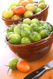 Last tomatoes of the season Stock Photo