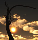 Last tree. Illustration of the tree put against the background of cloudscape Stock Illustration