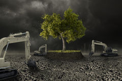 The last tree. Survive to wild urbanization Stock Photography