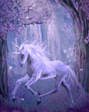 Last Unicorn Stock Photos