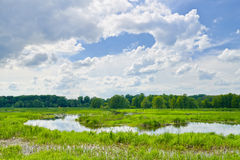 The last wild places. Cloudy landscape with Narew  Royalty Free Stock Photo